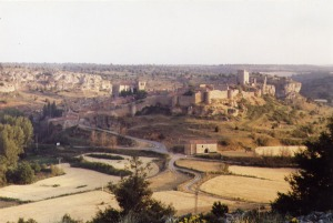 Ribera Soriana 2