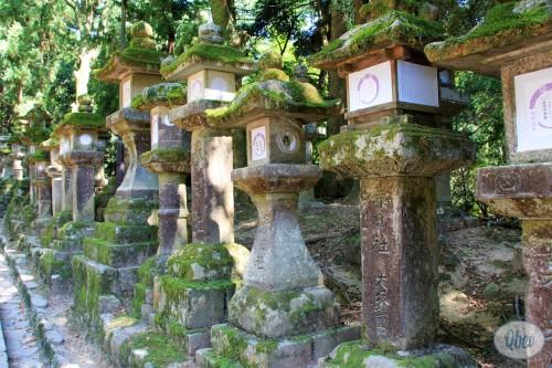Santuario Kasuga 2