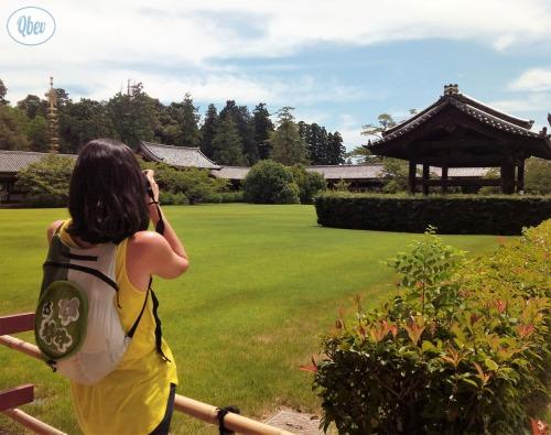 Todai-ji jardines