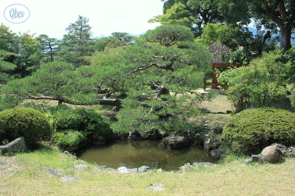 jardines-matsuhiro
