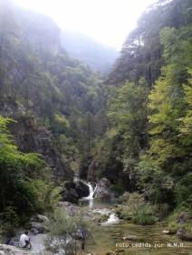 Cascadas y charcas