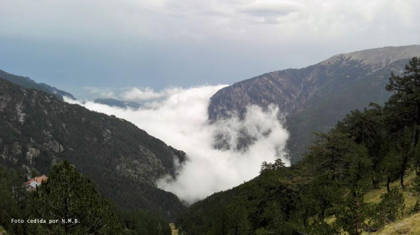 Niebla ascenso desde el Valle