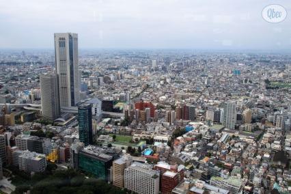 Panorámica Tokio desde Ayuntamiento 2