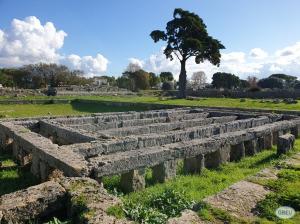 Paestum 4